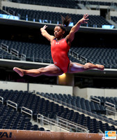Simone Biles - USA