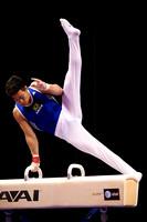 Sergio Sasaki Junior