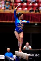 Morgan Steigerwalt
