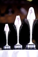 The Nastia Liukin Cup trophies