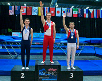 Senior Men's Trampoline medalists