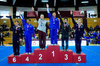 Pommel Horse champions