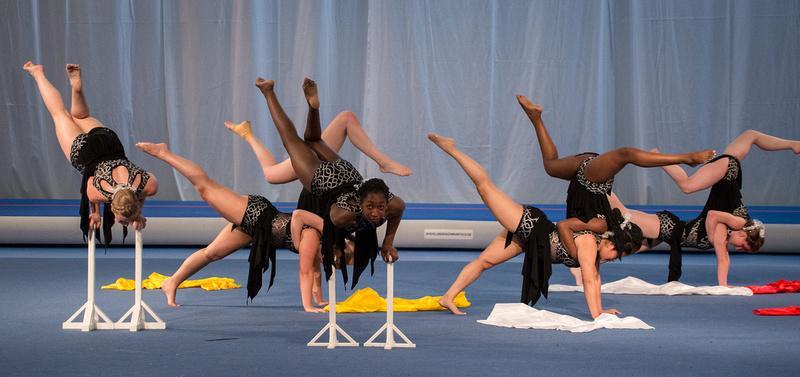 USA Gymnastics: 2015 World Gymnaestrada - July 12-18, 2015 &emdash;